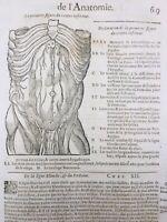 Écorché Anatomie 1614 Médecine Chirurgie Ambroise Paré Gastro-entérologie Artere