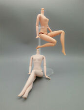 """DIY 12 Joint Movable Nude Naked Doll Body For 11.5"""" Doll Body For 1/6 BJD Doll"""