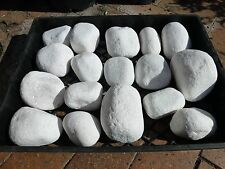 Pebbles   Snow White Small Boulders    approx 100-150mm size $1-25ea  NEW LINE
