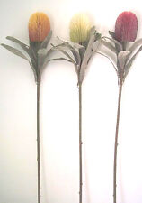 Artificial flowers & plants large Banksia F48