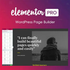 Elementor Pro Page Builder WordPress Plugin + 90 Widgets + WP Theme Page Builder