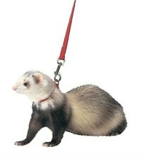 Ferret Harness And Lead Combo, No. Fp-004, by Marshall Pet Products