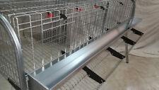 JAULA metálica para gallinas 4 departamentos. 1,60 cm. long. + regalo grapadora