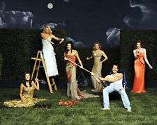 Desperate Housewives [Cast] (18574) 8x10 Photo