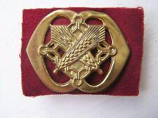 Netherland Dutch Army 36th, Intendance Military Cap Helmet Badge Holland