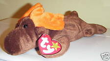 CHOCOLATE Moose Retired Ty Beanie Baby Babies Mint with Tag