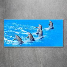 Glas-Bild Wandbilder Druck auf Glas 100x50 Deko Tiere Delfine Design & Stil Antiquitäten & Kunst
