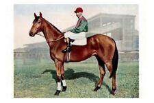 THE TRUMP Melbourne Cup Winner 1937 modern Digital Photo Postcard