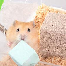 Pet Hamster Mice Rat Rabbit Mineral Teeth Grinding Stone Bones Snacks Chew Toy