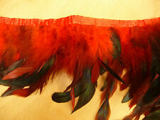 Feder Borte, Rot, Lange Federn, 14 cm, Grün, Satinband, Meterware
