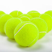 EE_ 6.5CM DURABLE NON-TOXIC USED TENNIS BALLS FOR DOGS-MACHINE WASHED ALLURING