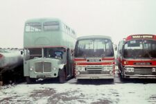Wards epping 9962sf aec bmaster depot 78 6x4 Quality Bus Photo