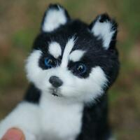 1*Realistic Husky Dog Simulation Toy Dog Puppy Lifelike Stuffed Toys Cute