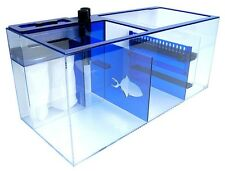 Trigger Systems Sapphire 39 Sump- BLUE LIMITED EDITION, 1 YEAR WARRANTY!!!