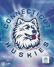 University of Connecticut UConn Huskies Logo Mascot glossy picture 8x10 photo #1