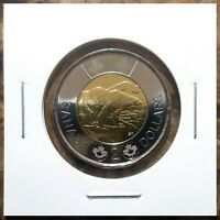 Canada 2014 Regular Toonie UNC BU From Mint Roll!!