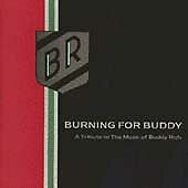 Various Artists : Burning for Buddy - A Tribute CD (1994)