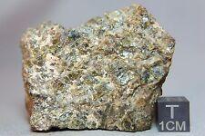 NWA 7831 HED Diogenite Meteorite 134.6 grams cut