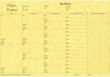 5 Generation Pedigree form Certificate Print on Quality Paper Kitten Breeder x6