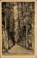 Plön Holstein AK ~1920/30 Schlossgarten Schloss Wasserallee Baum Allee Bäume