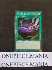 Yu-Gi-Oh! Pot de Sorcellerie  SUPER RARE  SHVA-FR055