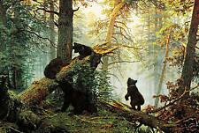 "LARGE BOX CANVAS ART BEARS IN FOREST LANDSCAPE 30""x20"""