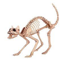 Skeleton Cat Halloween Decoration 100% Plastic Animal Bones Scary Party Prop New