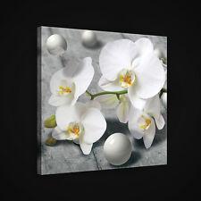 CANVAS Wandbild Leinwandbild Bild ORCHIDEE BLUMEN KUGELN KUNST HOLZ  3FX2405O5