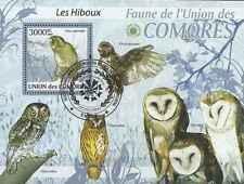 Timbre Oiseaux Hiboux Comores BF200 o année 2009 lot 19903 - cote : 21 €
