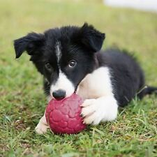 West Paw Boz Dog Ball -Small, Large- Tough Toy for Tough Chewers - Free Shipping