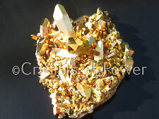 1 STARBRARY PURE 24KT GOLD AURA LEMURIAN SEED QUARTZ CRYSTAL POINT CLUSTER! SM