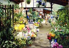 Spring Flowers    -  Clark Hulings  - Ltd Ed Print
