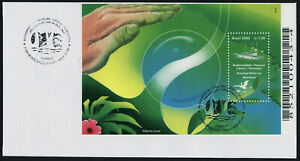 Brazil 2754 on FDC - Ship, Military presence in Amazonia, Flower
