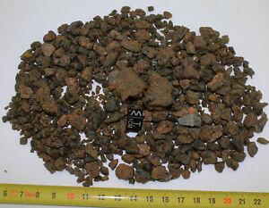 lot de météorites NWA 7831 Achondrite HED Diogénite dégradées ( 225 grs - 048 )