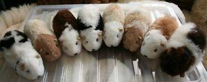Alpaca Guinea Pig Soft Toy, Real Alpaca Fleece, Fur, Plush, Fluffy, Cuddly
