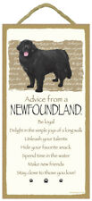 Advice From A Newfoundland dog puppy Inspirational Sign wood Wall hanging Plaque