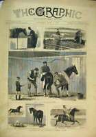 Original Old Antique Print Sketches Islington Horse Show 1880 Stable Racing