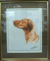 Vintage British Dog framed Watercolour Painting Red Setter signed Antony Rhodes