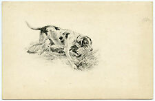 CHIEN DE CHASSE. HUNTING DOG. HUND.