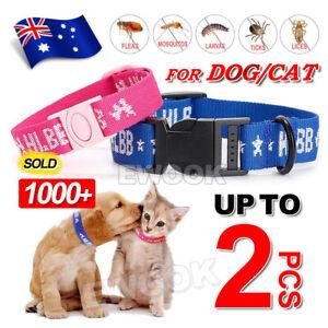 Adjustable 4in1 Cat Dog Pet Flea Egg Tick Collar Protection Kill Mosquitoe Pink