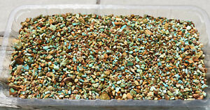 Royston Turquoise Parcel! Two Kilos! Smaller Colorful Specimens! Natural Stones!
