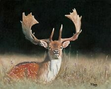 Oil painting original fallow deer dama dama on canvas panel, animal 8×10