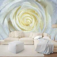 Vlies Fototapete weiße Blumen Rose Schlafzimmer Tapete XXL Wandtapete 83