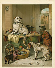 ANTIQUE DOGS JACK RUSSELL TERRIER DOG WITH OTHER DOGS ART PRINT 1870