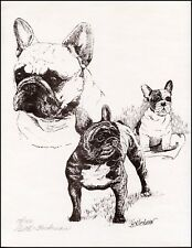 FRENCH BULLDOG DOG FINE ART LIMITED EDITION PRINT FRENCHI BOULEDOGUE FRANCAIS