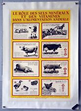Affiche originale ancienne - Rôle des sel minéraux dans l'alimentation animale