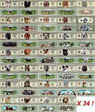 LOT X34 BILLETS de COLLECTION Thème CHIENS - DOLLAR US! Husky Jack Russel Cocker