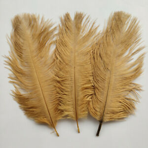 Hot Sale 10-100pcs Beautiful Natural Ostrich Feathers 6-8inch/15-20cm 36 Colors