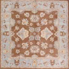 New Hand Tufted Classic Floral Brown Square! 10x10 Oushak Agra Oriental Area Rug