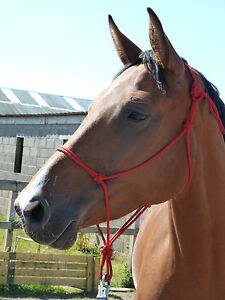 EASY-DOES-IT ROPE HALTER,  PARELLI, NATURAL HORSEMANSHIP. 10 SIZES, 11 COLOURS.